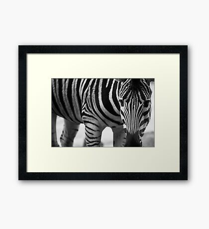 Stripes and more stripes Framed Print