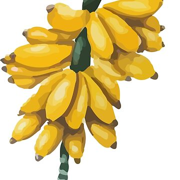 Banana Cunch T-Shirt by CascudoGifts