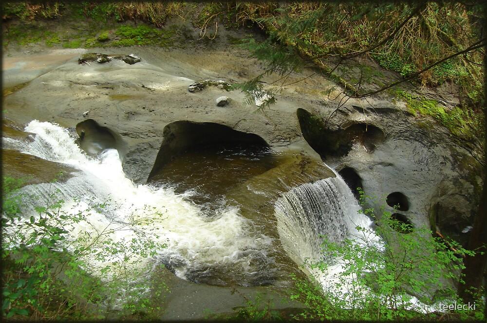 Old Skull River by teelecki