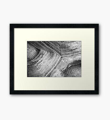 Shellscape of a giant tortoise. Framed Print