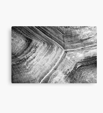 Shellscape of a giant tortoise. Canvas Print