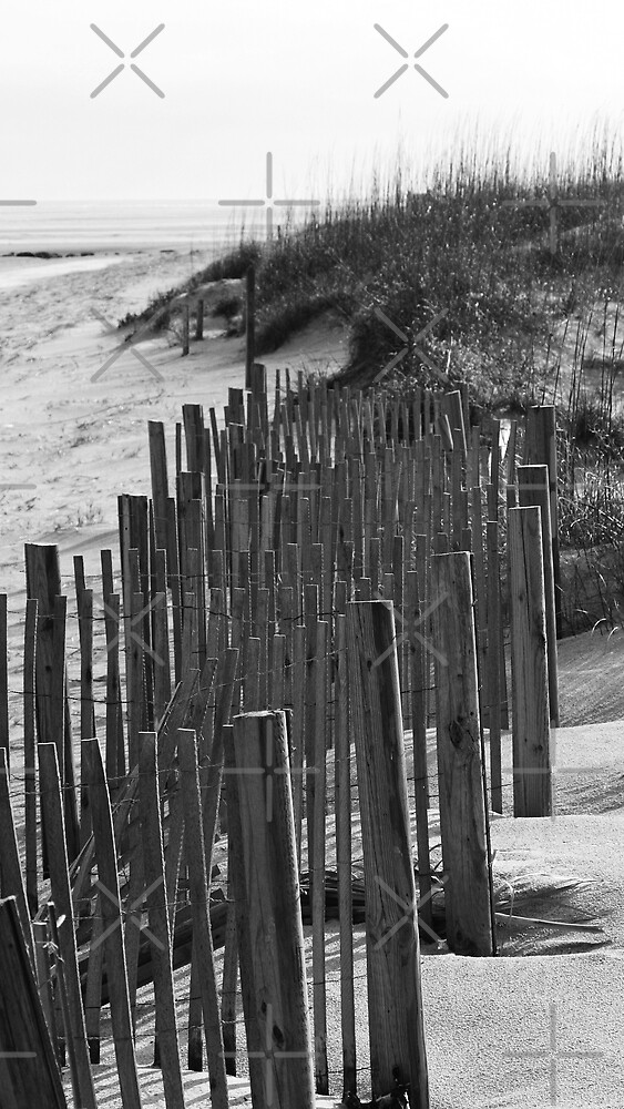 Sand Dunes of Tybee Island ll by Julie's Camera Creations <><