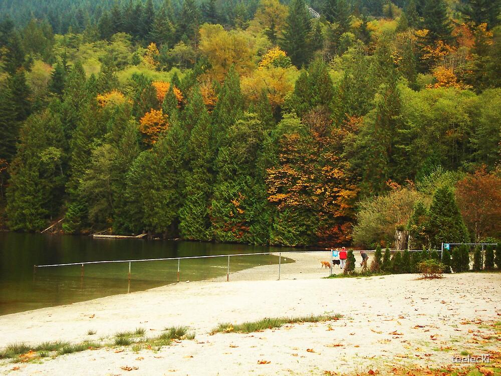 Buntzen Lake2 by teelecki