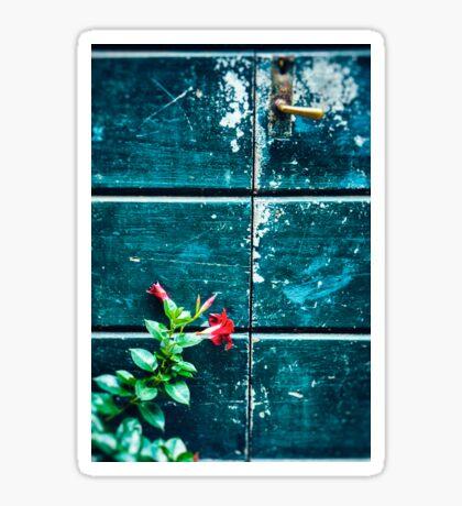 Red flower against old door Sticker