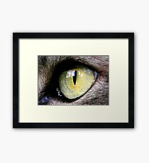Jimmy's Eye Framed Print