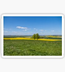 Countryside In Spring Sticker