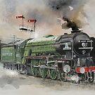 Peppercorn Class A1 TORNADO by JohnLowerson