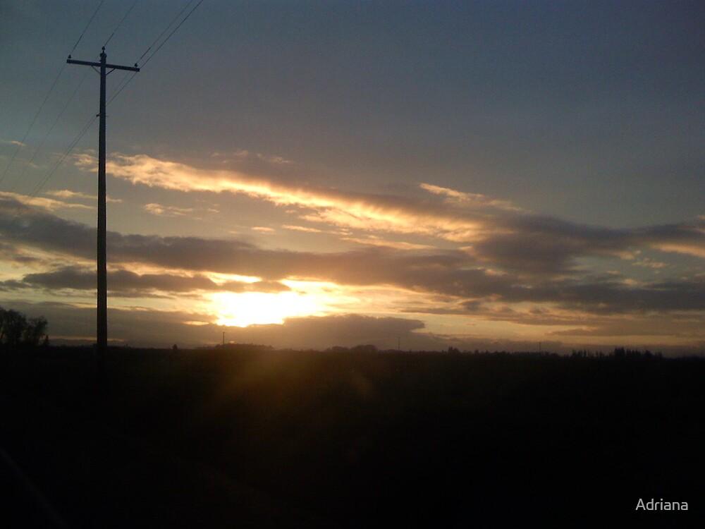 Oregon Sunset by Adriana