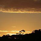 golden sky by veins