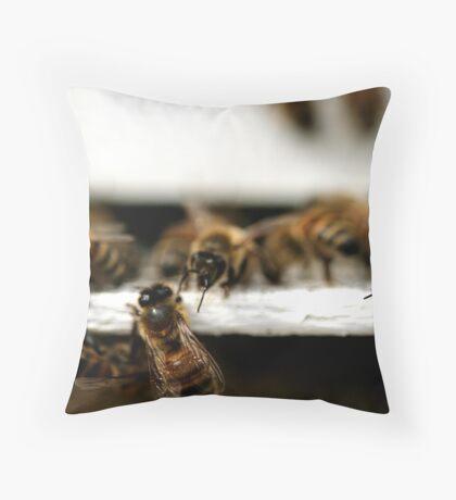 busy bottoms - 4  Throw Pillow