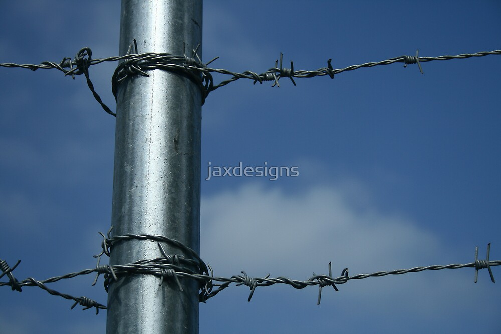 Untitled by Jacqueline Barreto