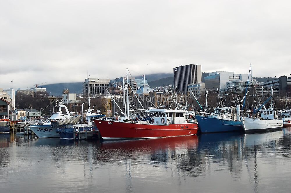 Fishing fleet sheltering in the harbour by Philip Northeast