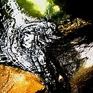Sea Cave I by Kathie Nichols