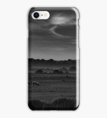 Romney Sheep iPhone Case/Skin