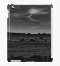 Romney Sheep iPad Case/Skin