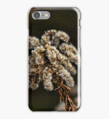 A Winters Bloom iPhone Case/Skin