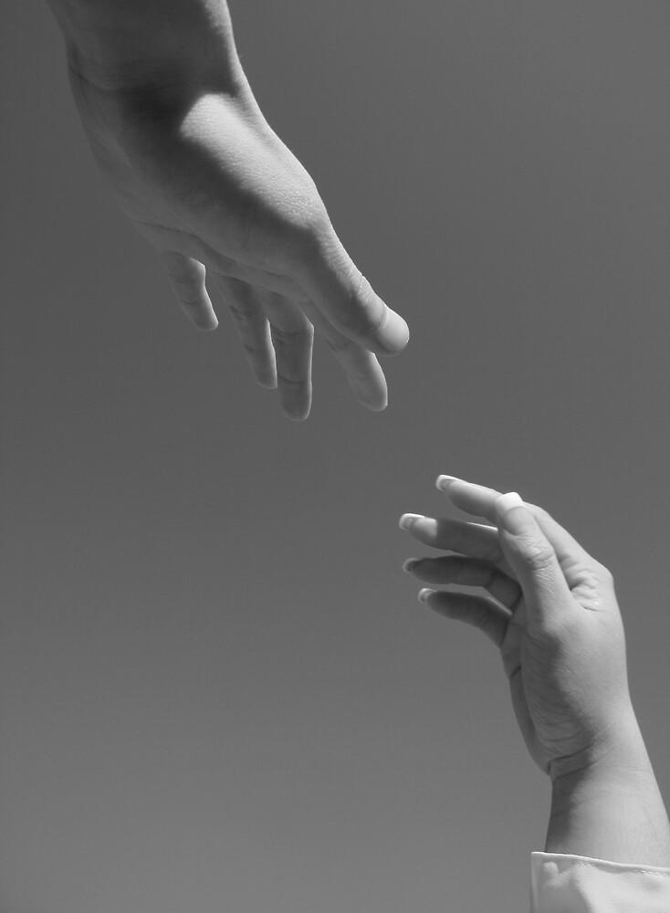 The Reach. by Zaldy Infante