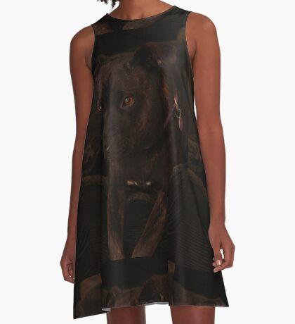 Millys Porträt A-Linien Kleid