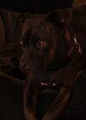 Millys Porträt von Evita