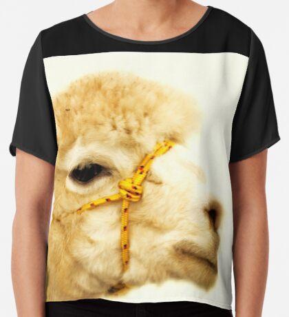 Porträt eines Alpakas Chiffontop für Frauen