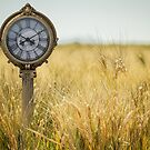 Time to Harvest by Randy Turnbow