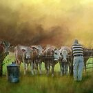 The Cow Whisperer by wallarooimages