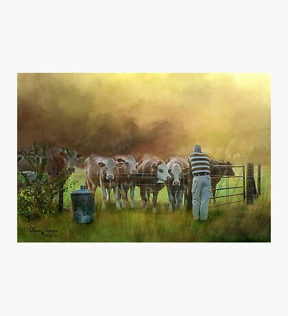 The Cow Whisperer Photographic Print