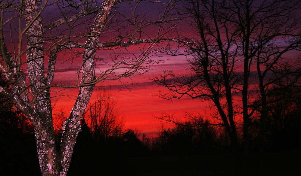 Alabama sunrise,bclhouse by mel1forjon