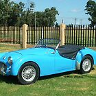 Things on Wheels - 1958 Triumph TR3  by Maree Clarkson