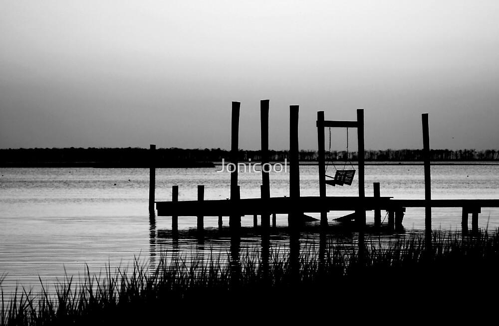 Just Before Night by Jonicool