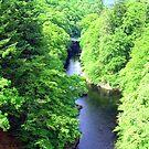 River Garry II by Tom Gomez