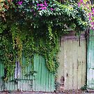 The old back gate. by Jeanette Varcoe.