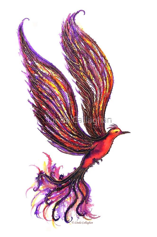 The Rise of the Phoenix by Linda Callaghan