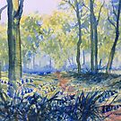 """""""Bluebells in Sewerby Park by Glenn  Marshall"""