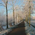 Holland snow  by Giel Meijer