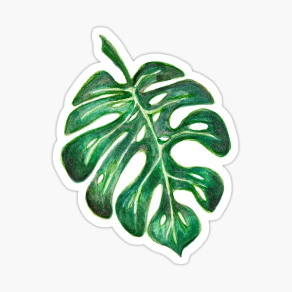 Leaf Two Sticker