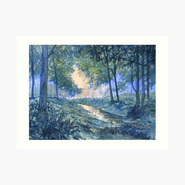 """""""Evening in Wykeham Forest"""" Art Print"""
