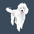 Jackson the Poodle by VieiraGirl