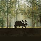 Moose in Forest Illustration by ironydesigns