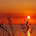 Dunsborough Dawn by lezvee