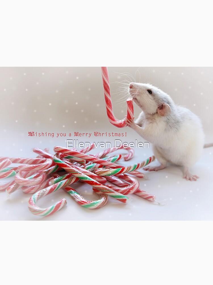 Saffie and Christmas :) by Ellen