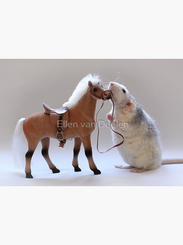 I love horses! by Ellen