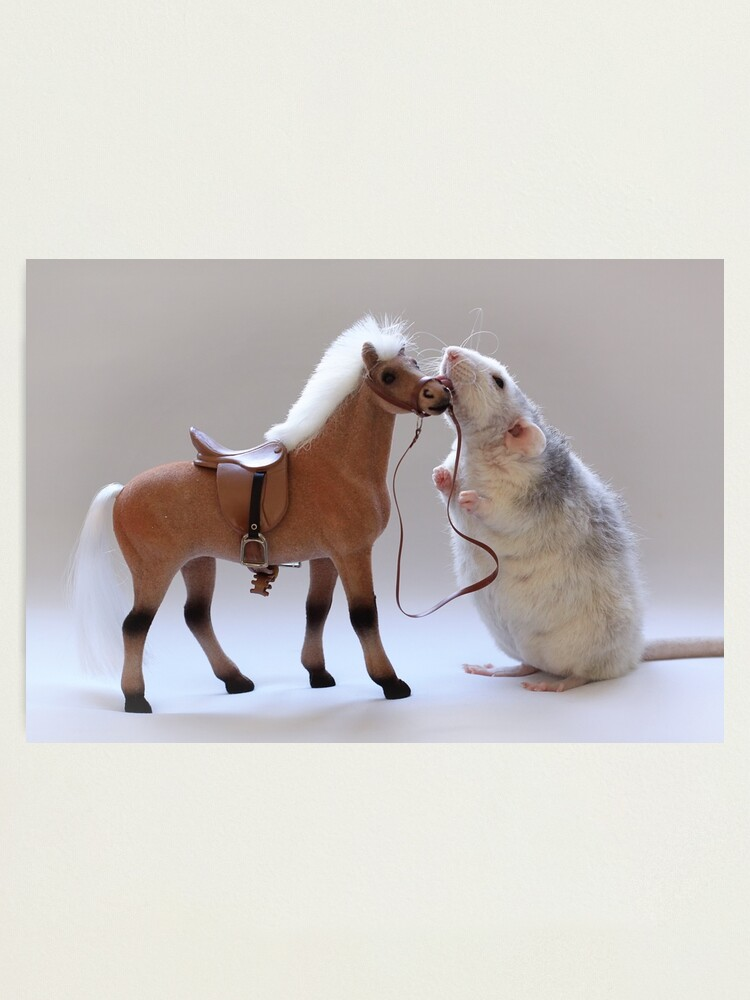 Alternate view of I love horses! Photographic Print