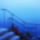 Artscape.....Stairs into the Lake Geneva by Imi Koetz