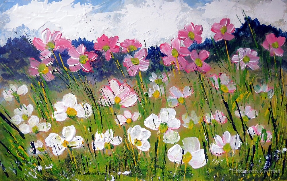 Cosmos next to the road-side by Elizabeth Kendall