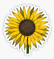SUNFLOWER YELLOW CUTE COLORFUL FLOWER FLOWERS Sticker