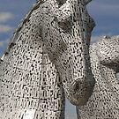 the Kelpies, Helix Park, Falkirk , Scotland by David Rankin