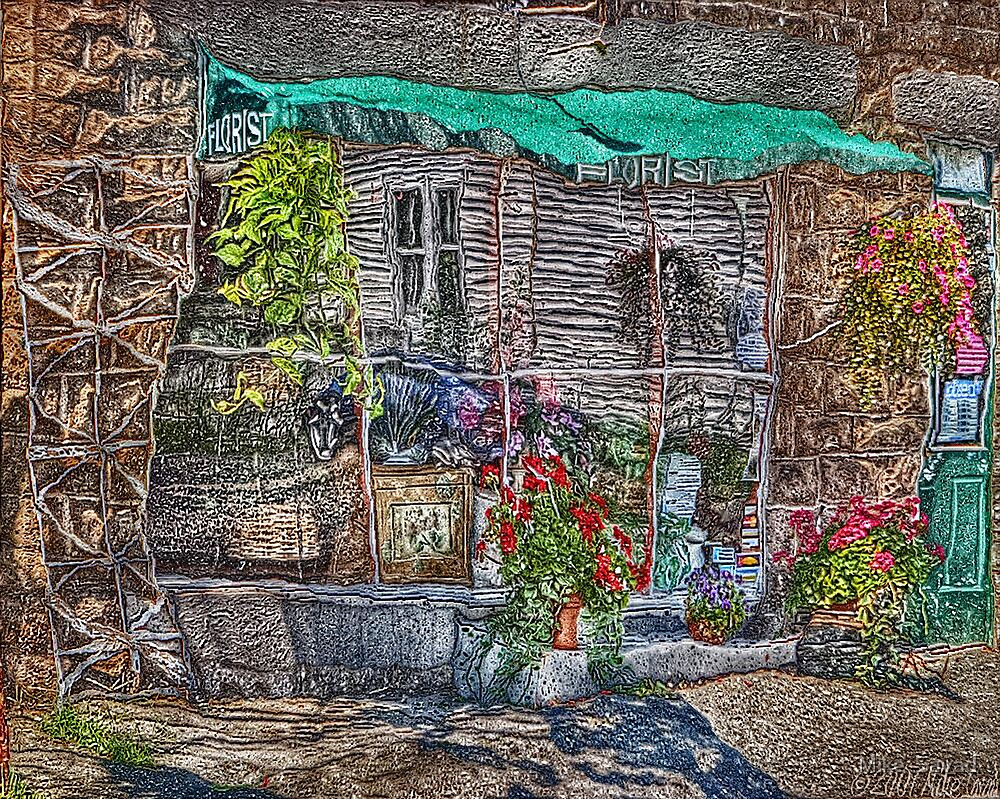 Florist Shop - Surreal Version by Michael Savad