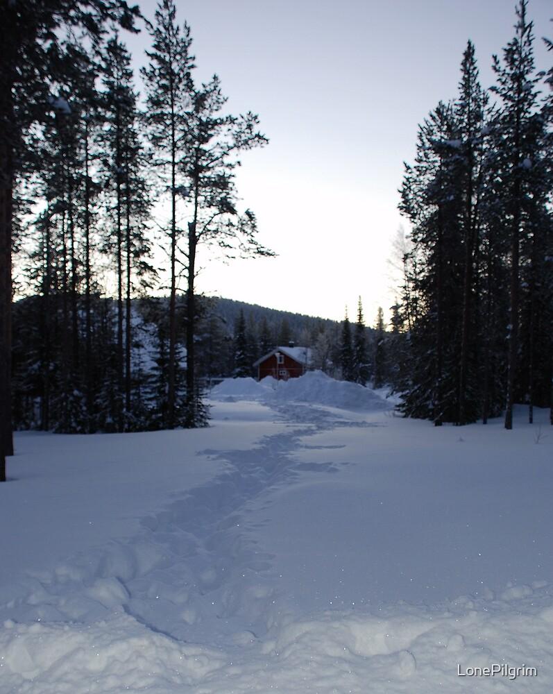 Long Walk Home by LonePilgrim