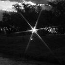 Star of Sunset by Allenjohn